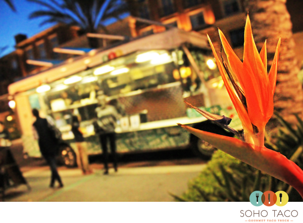 SoHo Taco Gourmet Taco Truck - Food Truck - The Park Irvine Spectrum - Orange County - CA - logo