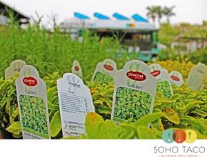 SoHo Taco Gourmet Taco Truck - Rogers Gardens - Newport Beach - Orange County - CA - July 2012