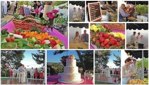 SoHo Taco Gourmet Taco Catering - Wedding - Rolling Hills Estates - Los Angeles - CA