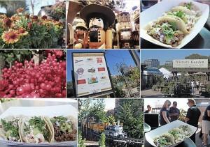 Soho-Taco-Gourmet-Taco-Truck-Rogers-Gardens-Corona-Del-Mar-Newport-Beach-Orange-County-Autumn-Fall