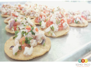 SOHO TACO Gourmet Taco Catering - Los Angeles - Appetizers - Red Snapper Ceviche -Eagle Rock Wedding