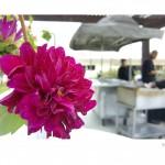 SOHO TACO Gourmet Taco Catering - David L Baker Memorial Golf Center - Wedding - Fountain Valley