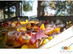 SOHO TACO Gourmet Taco Catering - Rancho Tecolote - Goleta - Santa Barbara - Veggies On The Grill -F