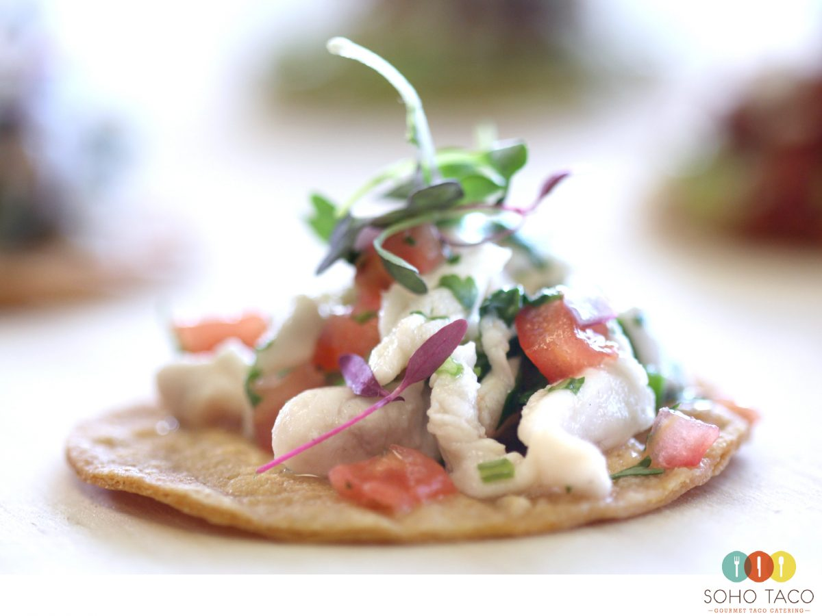 SOHO TACO Gourmet Taco Catering - Tostadita de Red Snapper Ceviche Appetizer
